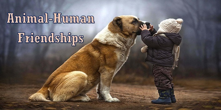 Animal-Human Friendships