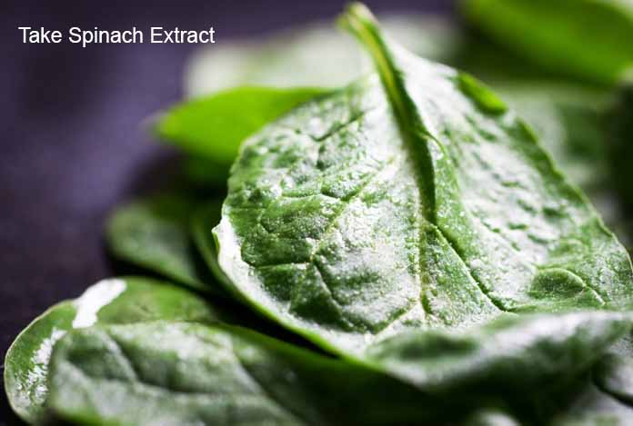 Take Spinach Extract Food Craving and Lose Weight