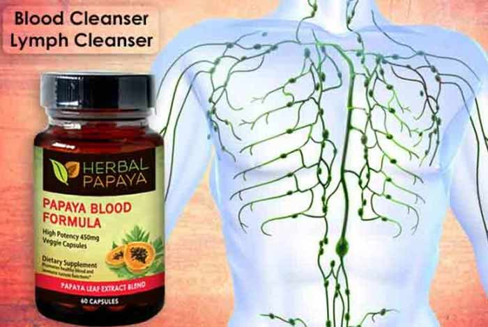 blood cleanser lymph cleanser