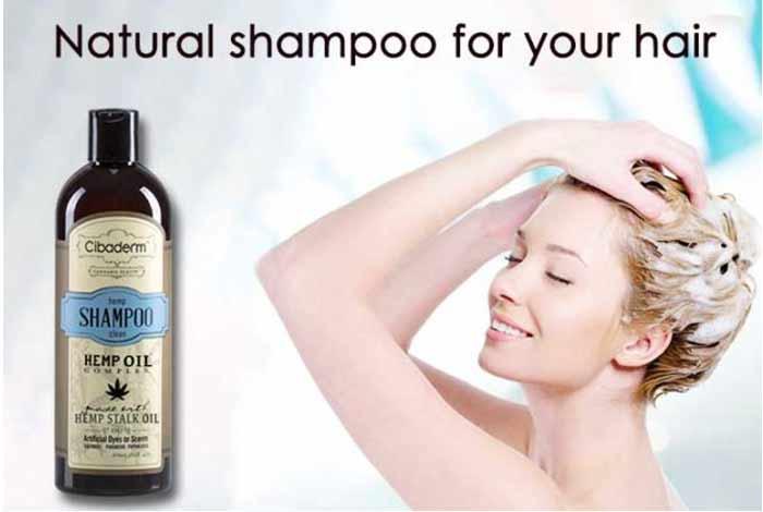 cibaderm shampoo