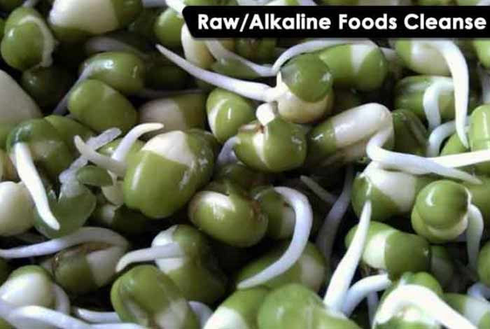 raw alkaline foods cleanse