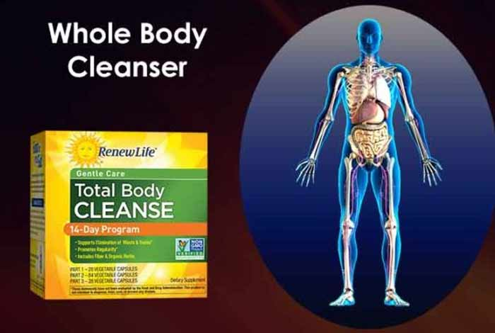 whole body cleanser