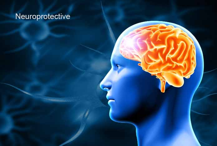 CBD hemp oil as a neuroprotective agent