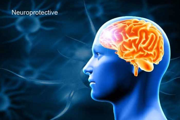 acts as a neuroprotective agent