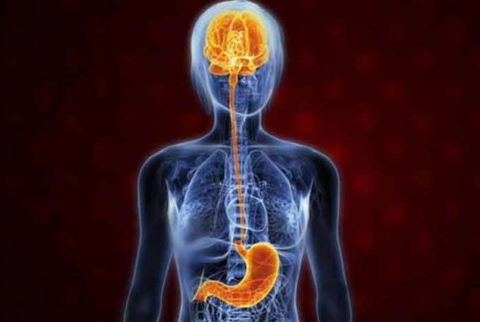 causes and prevention of irritable bowel syndrome