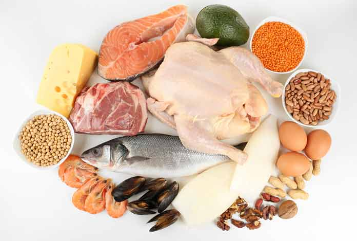Include Ample of Protein in your Diet Plan for reduce belly fat
