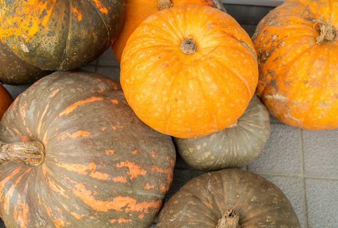 Pumpkin can rescue you out of this abyss for Infertility in Men