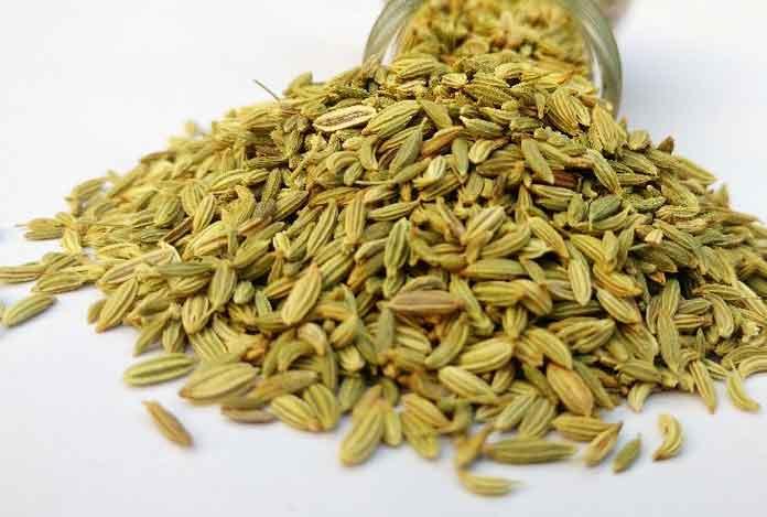 Fennel Seeds for Digestion