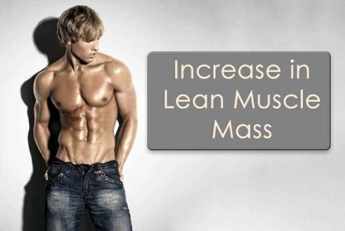 increased lean muscle mass