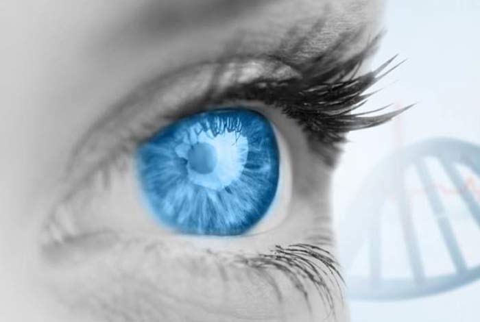 causes and prevention of amd