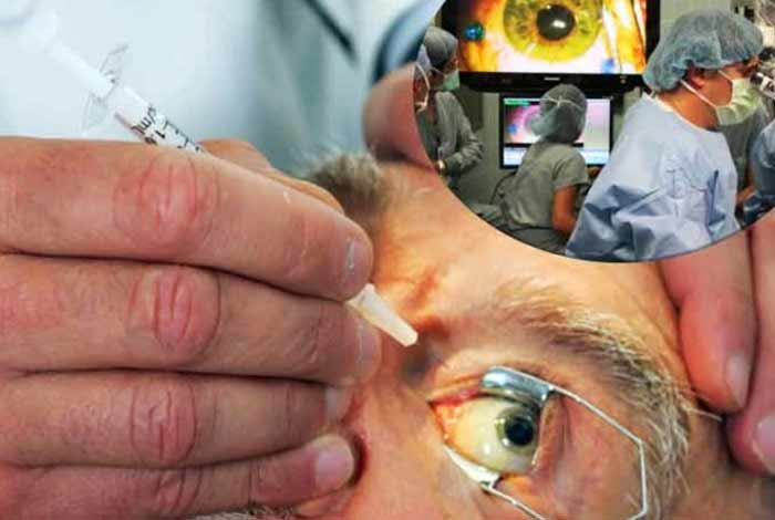 treatment and care for age related macular degeneration