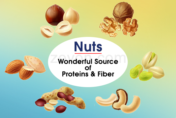 eat handful of nuts to prevent aging