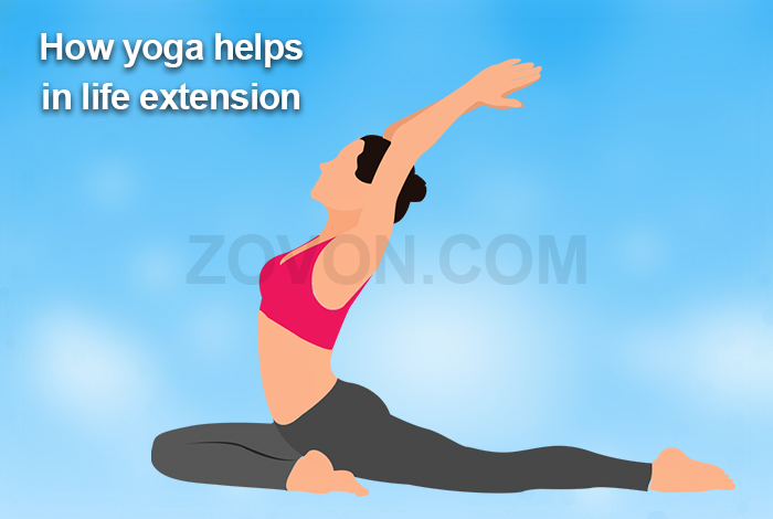 yoga helps in life extension