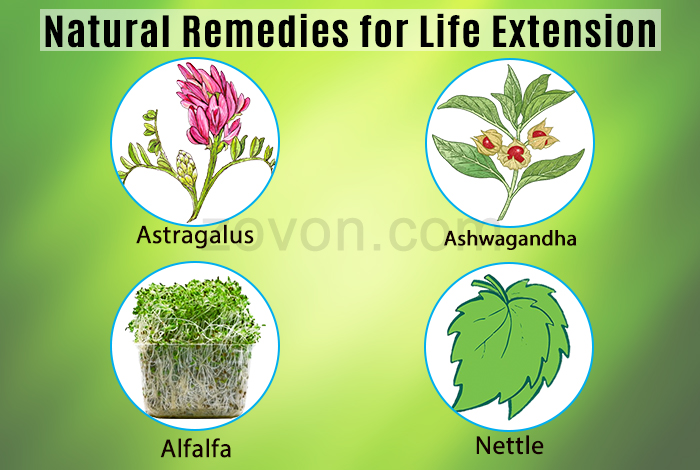 natural remedies for life extension