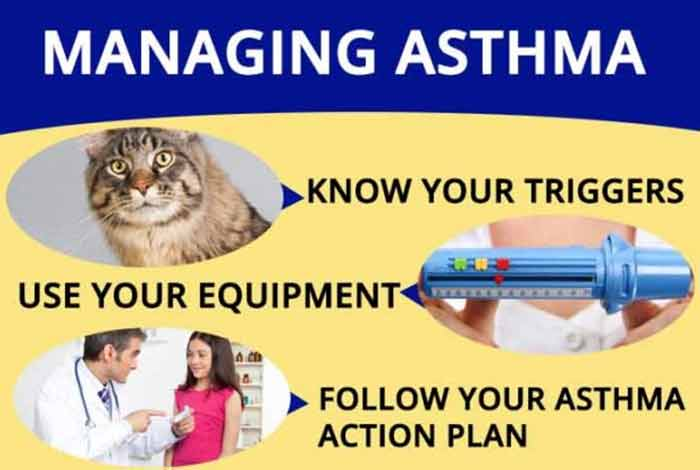world asthma day objectives