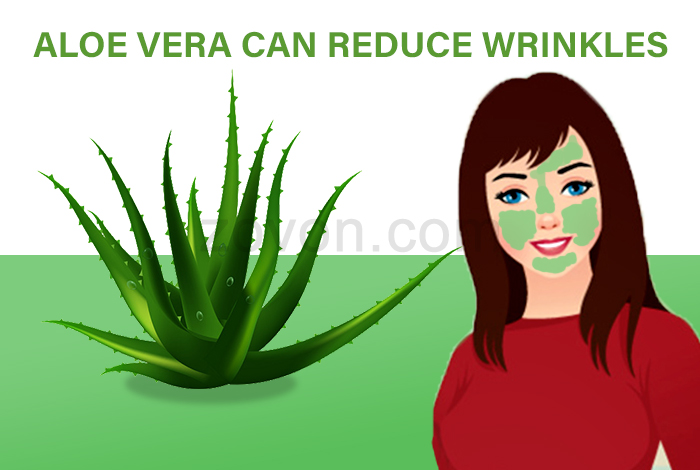 aloe vera for anti aging