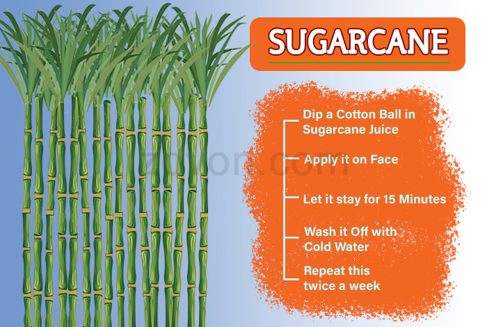 sugarcane for anti aging