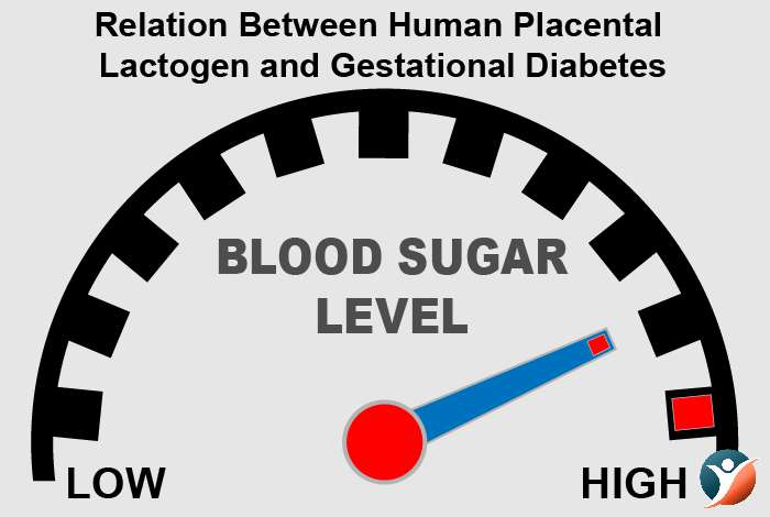 Relation Between Human Placental Lactogen and Gestational Diabetes