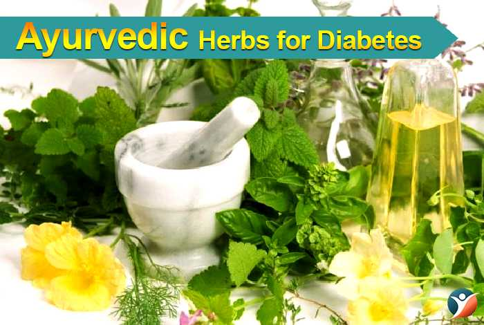 Ayurvedic Herbs for Diabetes