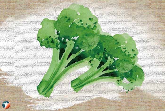 Brocoli-to-increase-penis-size