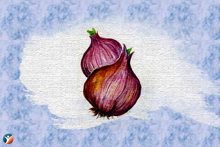 onion-to-increase-penis-size