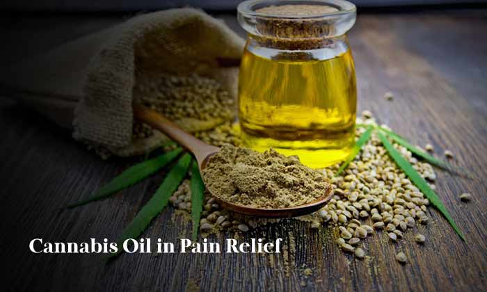 Cannabis Oil in Pain Relief