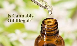 is cbd legal in montana