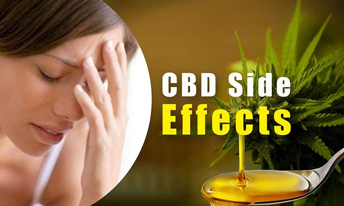 Side Effects of Cannabis Oil