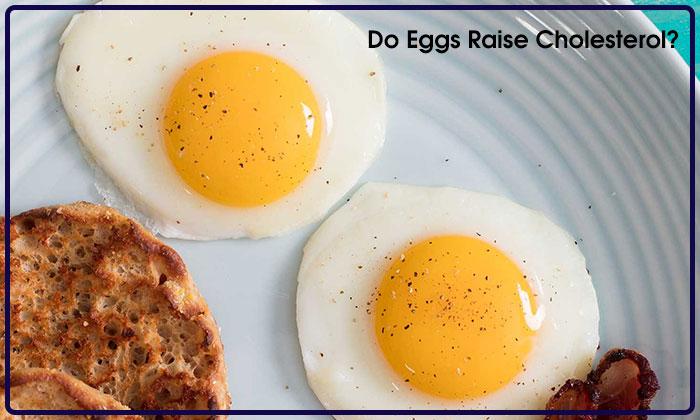 Do Eggs Raise Cholesterol?